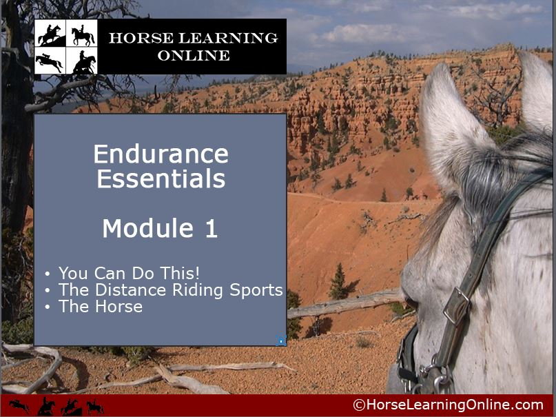 And We Are Launched! Endurance Essentials Web-Based Course!