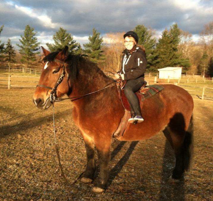 Endurance Riding and Einstein